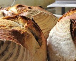 white basket sourdough 9