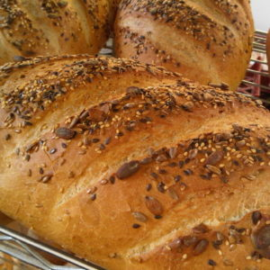 seeded white bloomer